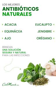 los-mejores-antibióticos-naturales