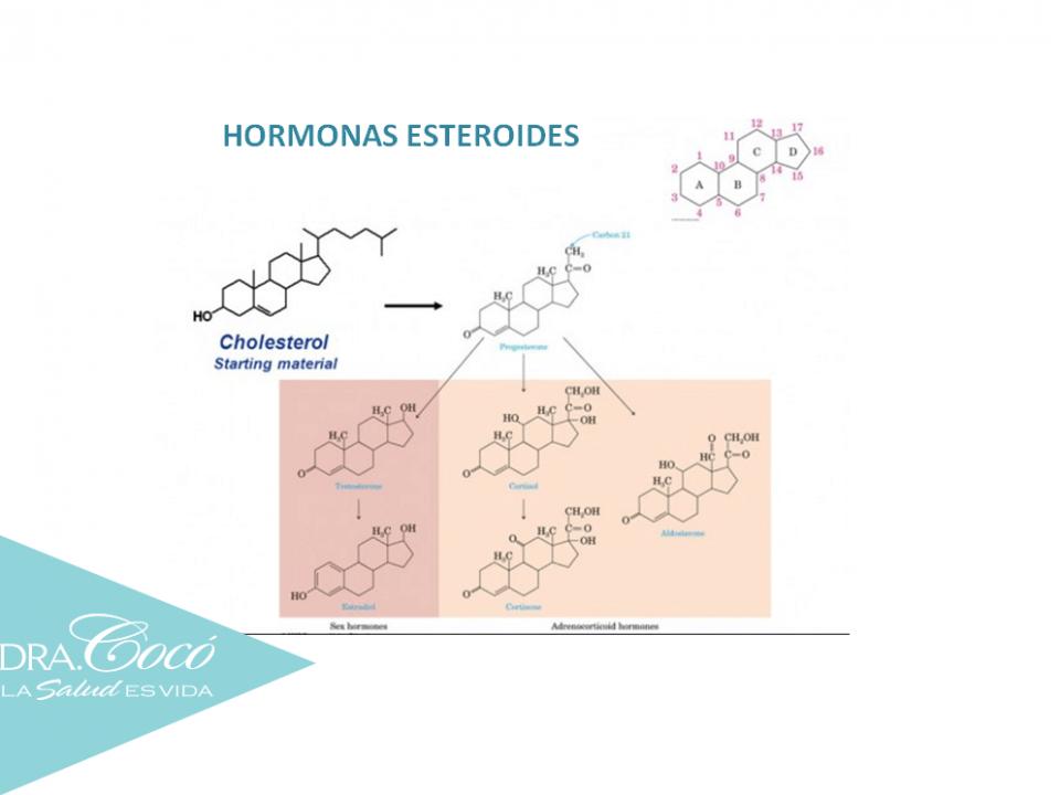 consejos-para-equilibrar-tus-hormonas