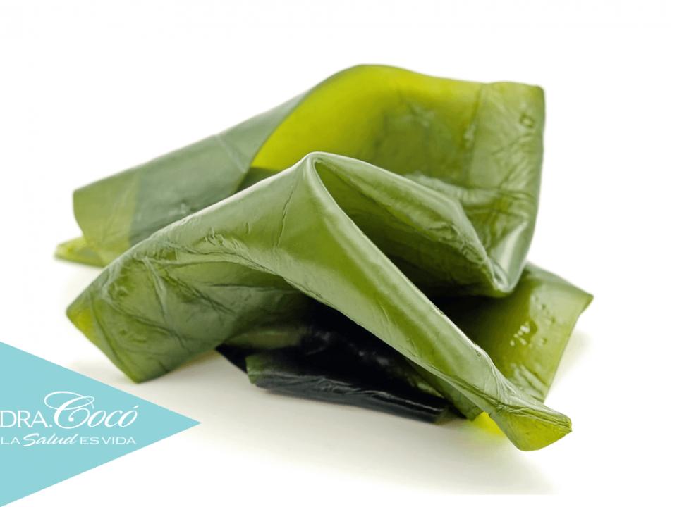 alga-kelp-para-el-metabolismo