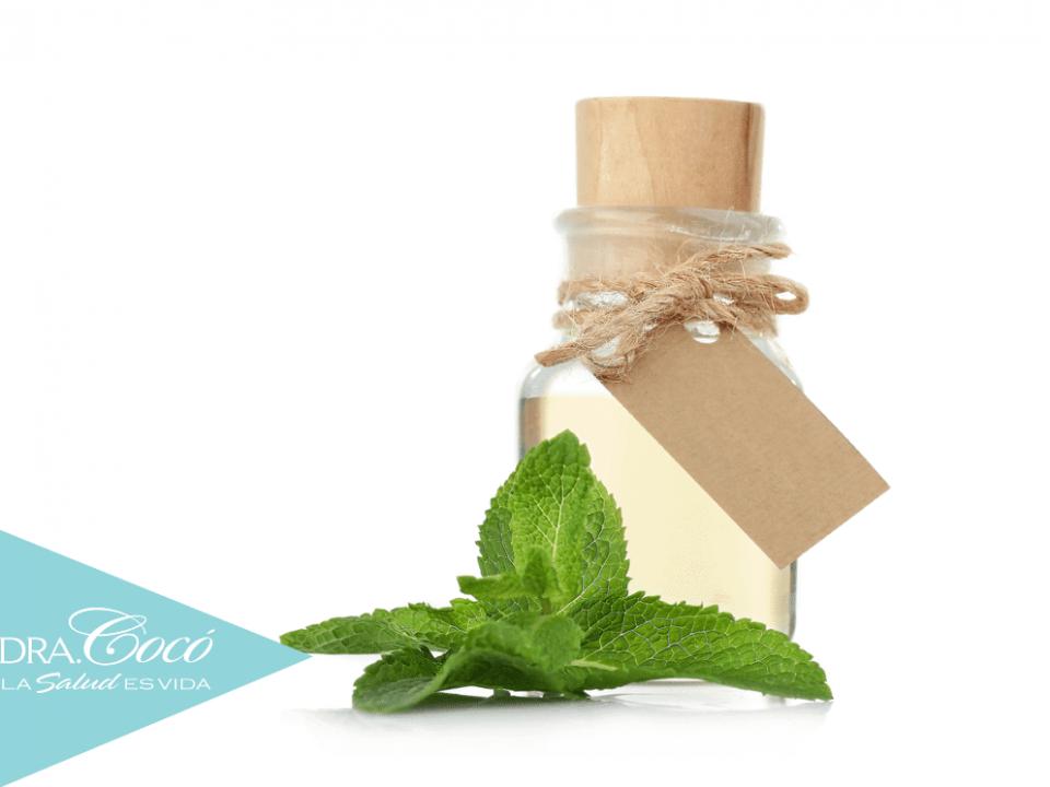 beneficios-del-aceite-esencial-de-melisa