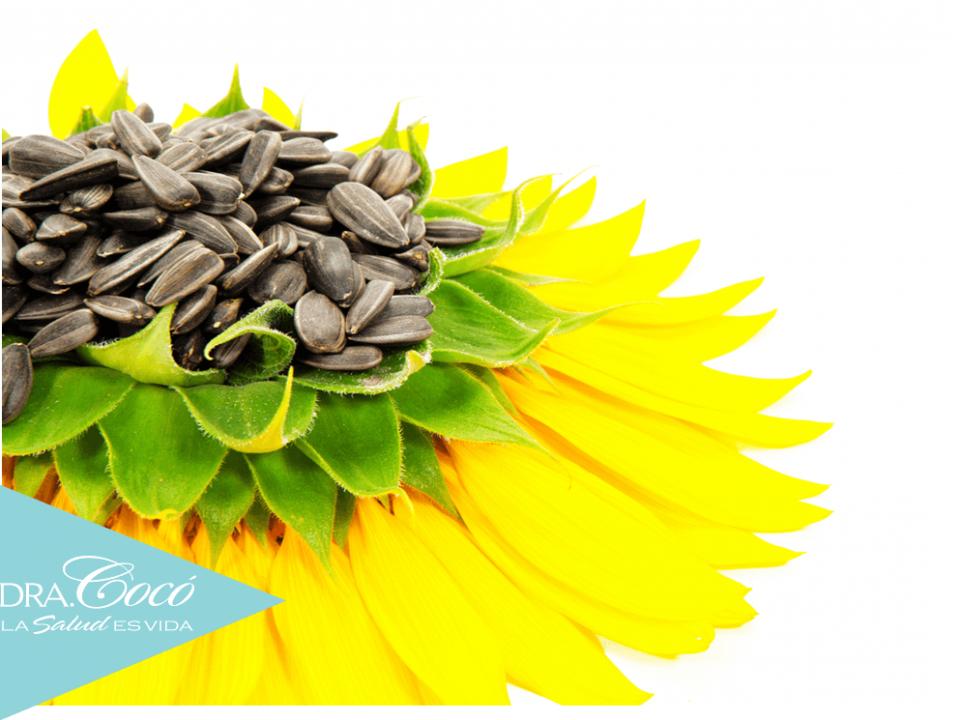 las-semillas-más-saludables