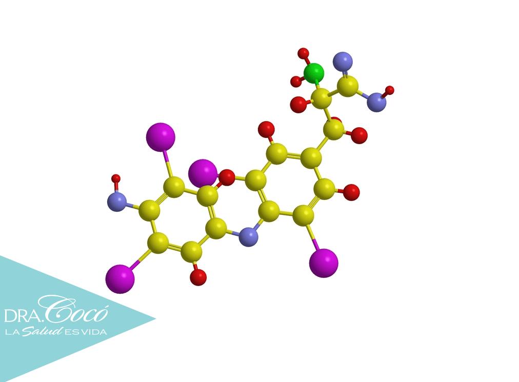 carbohidratos-hormonas-perder-peso