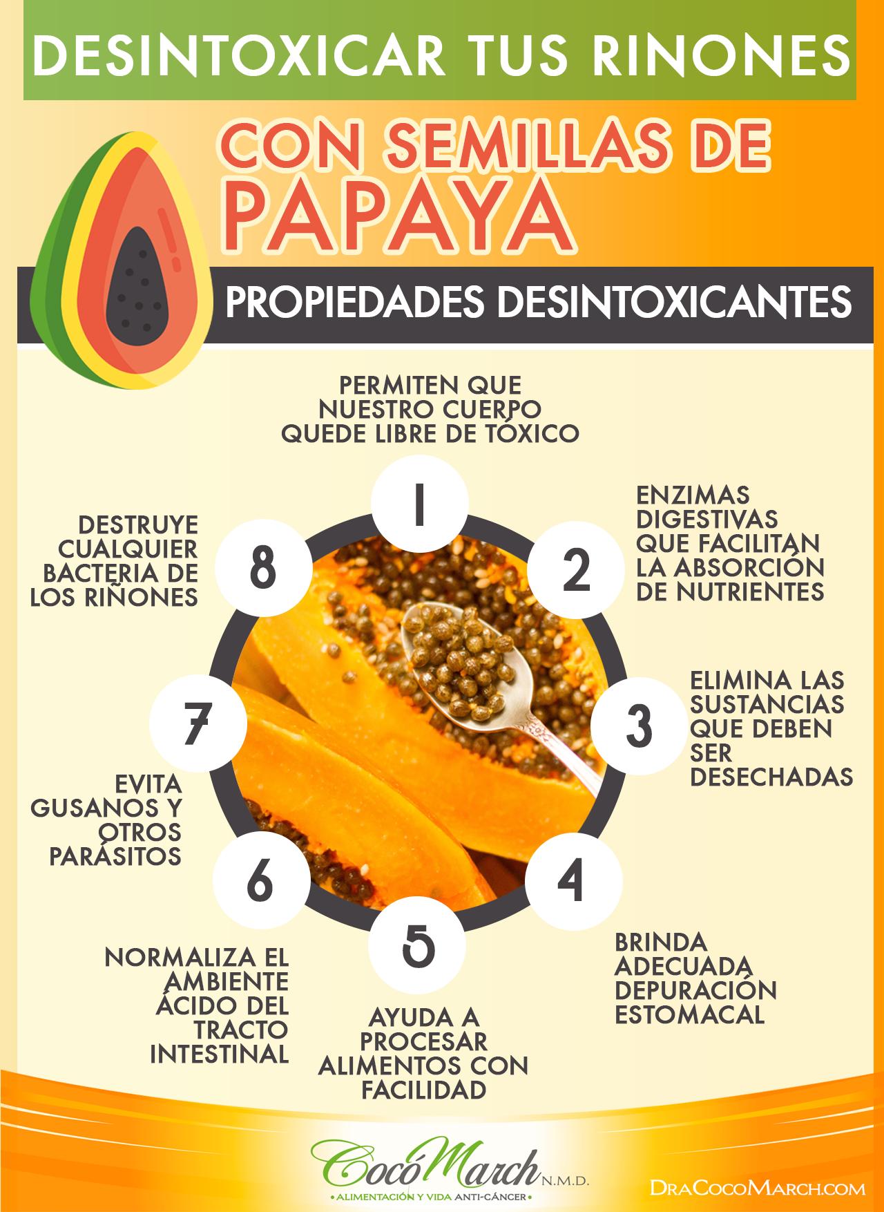 desintoxicar-los-riñones-con-semillas-de-papaya