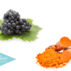 el-resveratrol-y-la-cúrcuma-para-combatir-el-cáncer