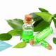 remedios-naturales-para-eliminar-los-piojos