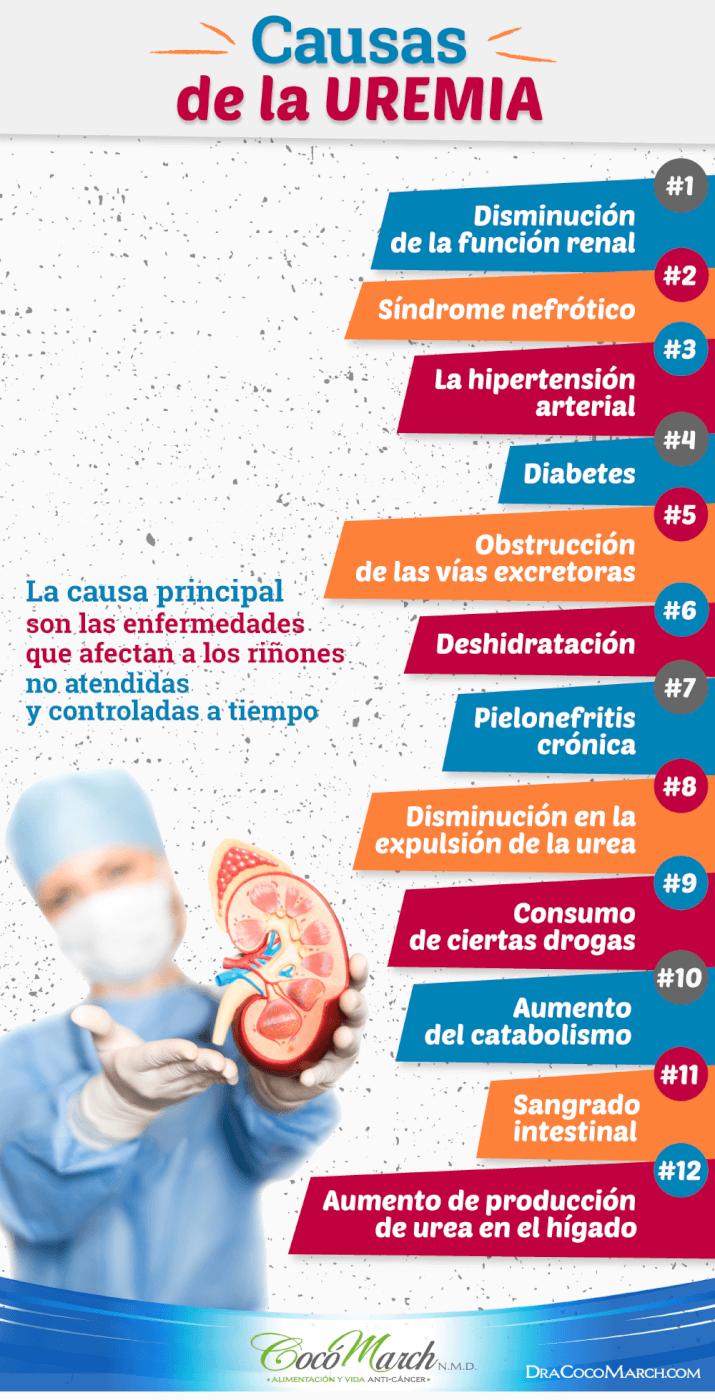causas-de-la-uremia