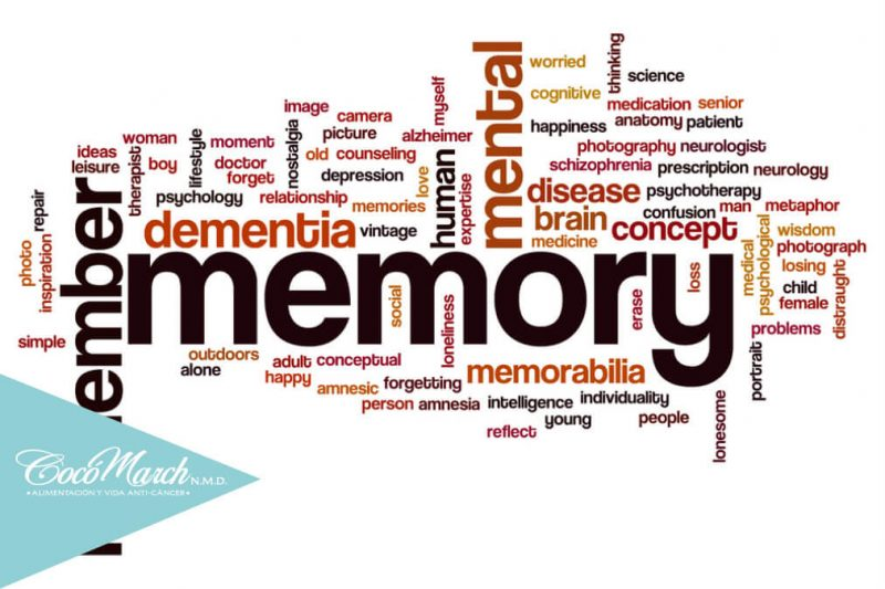 factores-que-afectan-la-memoria-deficiencia-de-vitamina-b