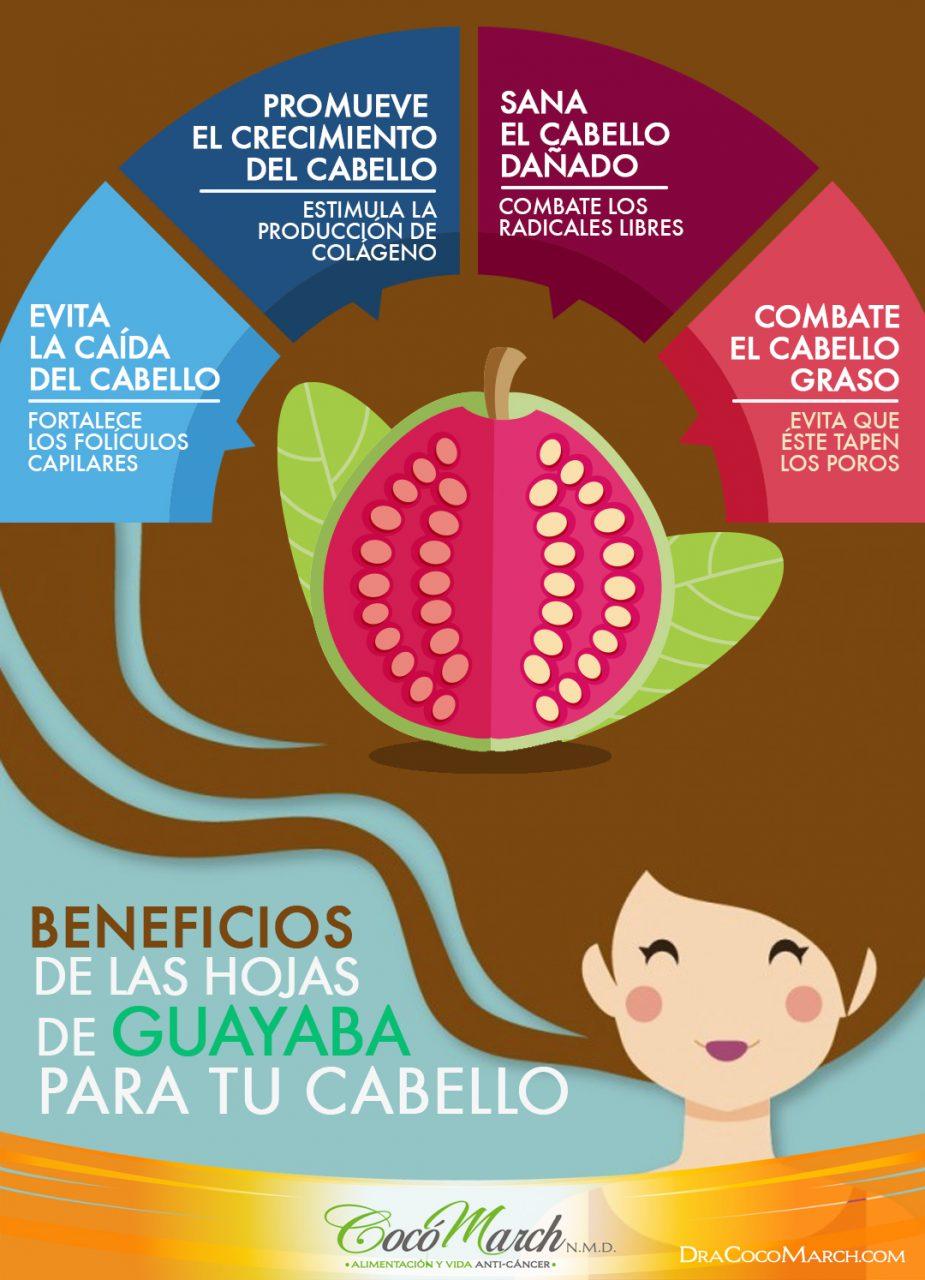 beneficios-de-las-hojas-de-guayaba-para-el-cabello