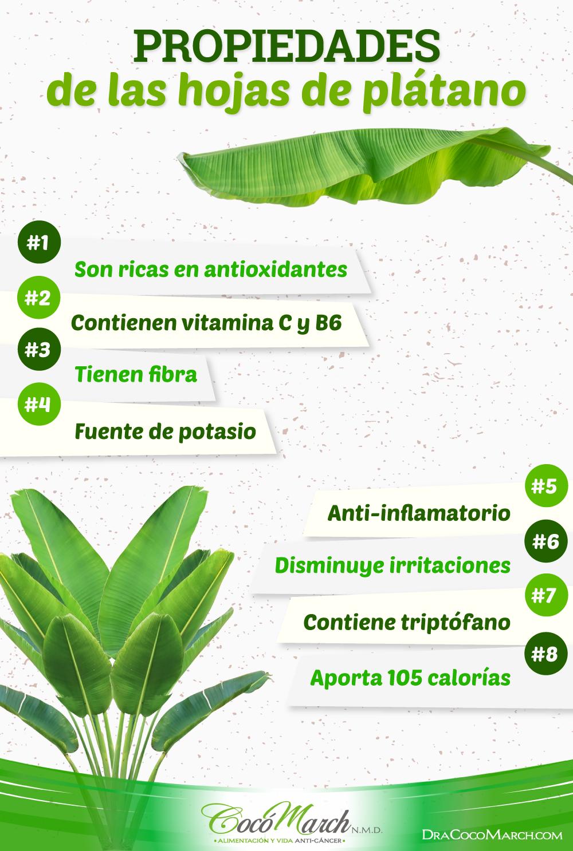 propiedades-de-las-hojas-de-plátano