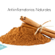 mejores-alimentos-antiinflamatorios