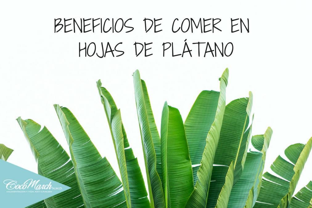 beneficios-de-las-hojas-de-plátano