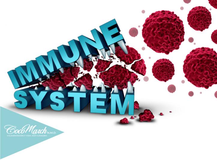 sistema-inmune-riesgos