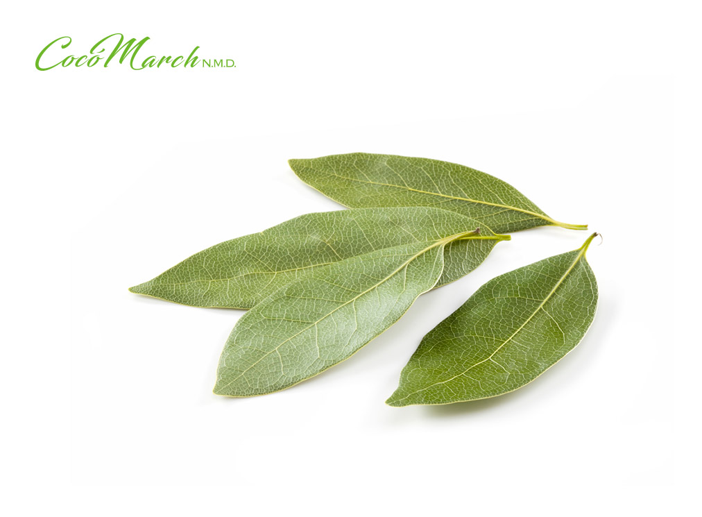 remedios-caseros-con-hojas-de-laurel