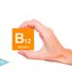 las-plantas-fuente-de-vitamina-b-12