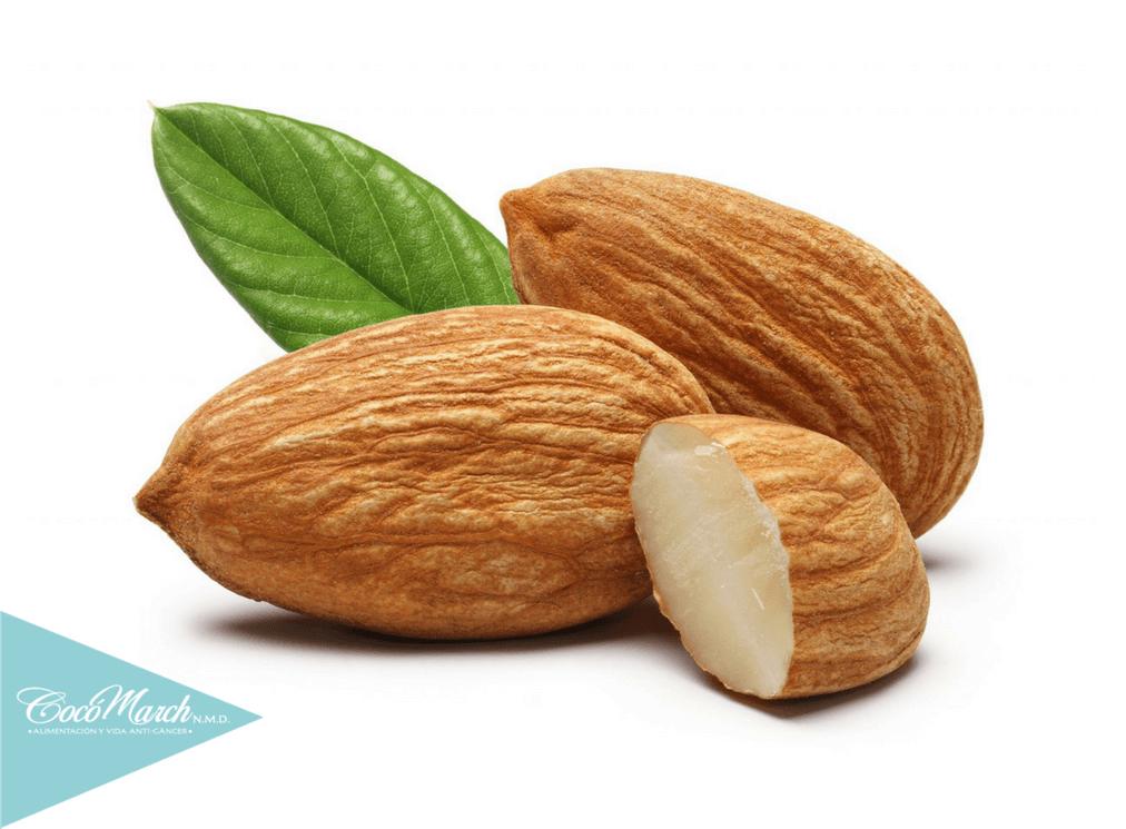 alimentos-que-contienen-vitamina-e