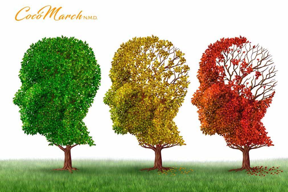 cambio-de-estilo-de-vida-para-prevenir-el-alzheimer
