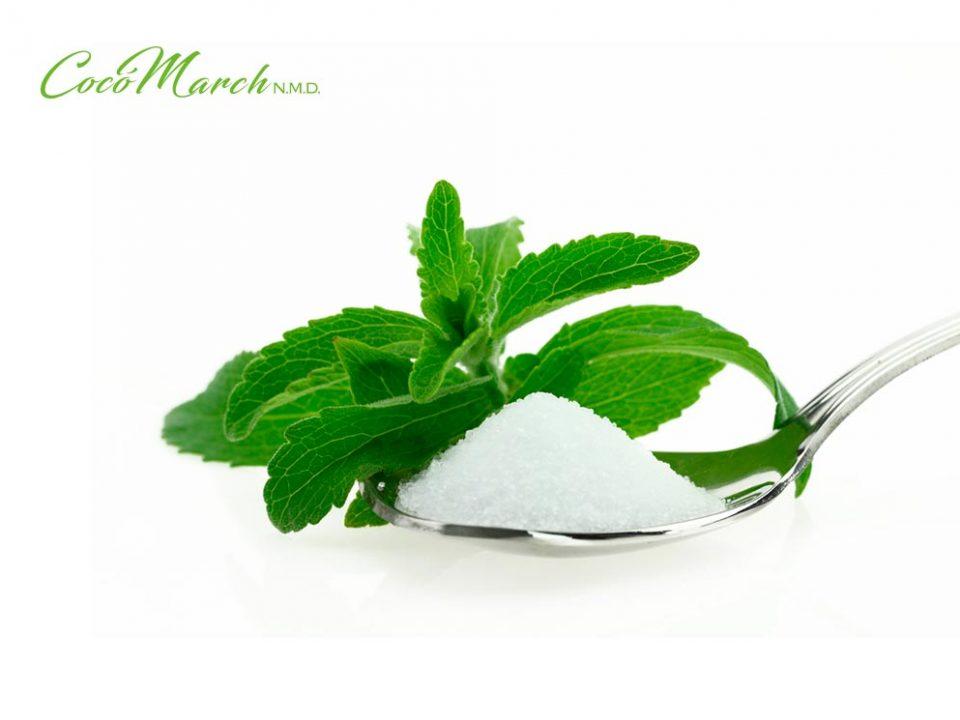 como-cultivar-la-stevia-en-casa