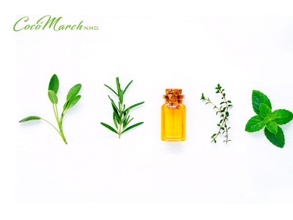 remedios-naturales-para-la-periodonditis
