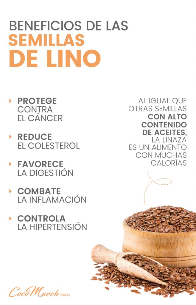 semillas-de-lino-o-linaza-beneficios