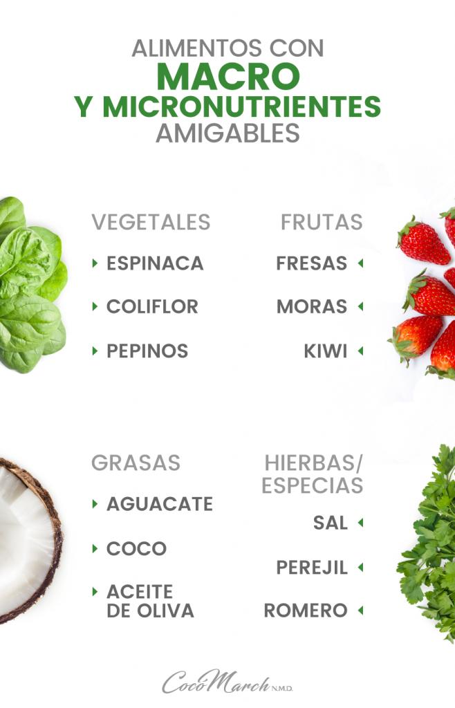 alimentos-macro-y-micronutrientes