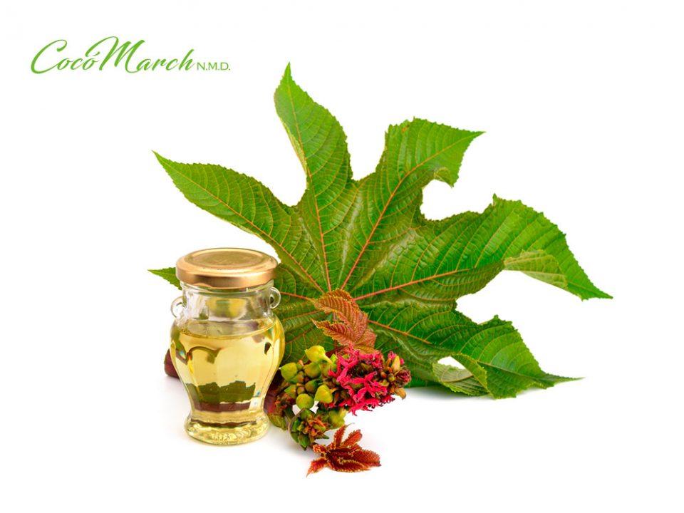 remedios-caseros-para-la-inflamación-de-ovarios