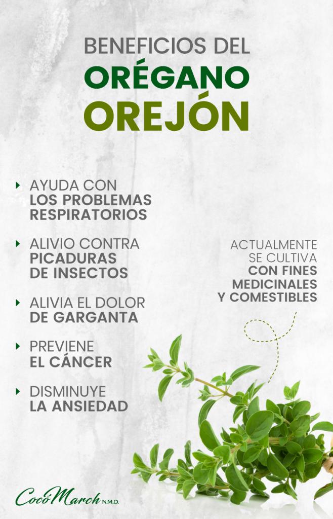 orégano-orejón-beneficios