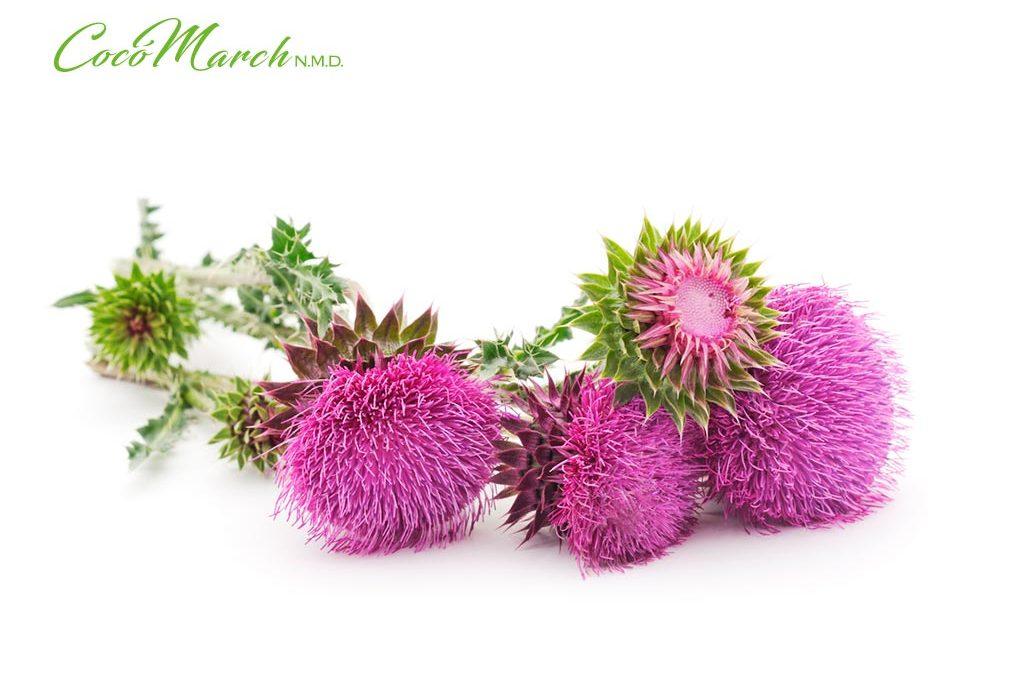 remedios-naturales-para-la-hepatitis