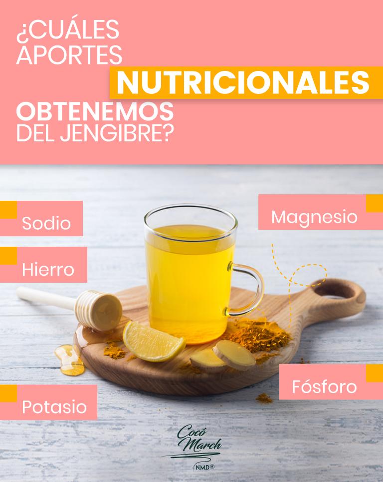 jengibre-aportes-nutricionales