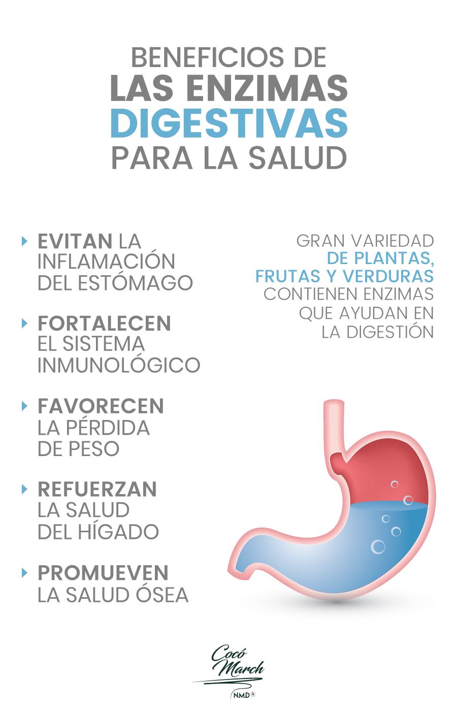 enzimas-digestivas-beneficios