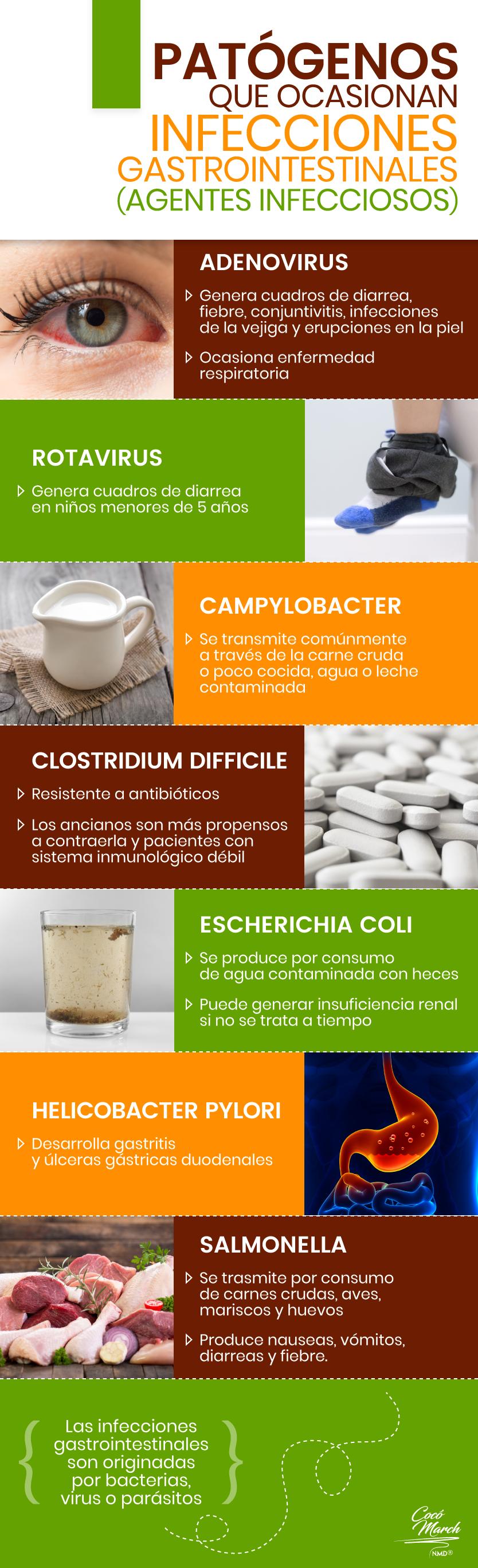 patogenos-que-ocasionan-infecciones-intestinales