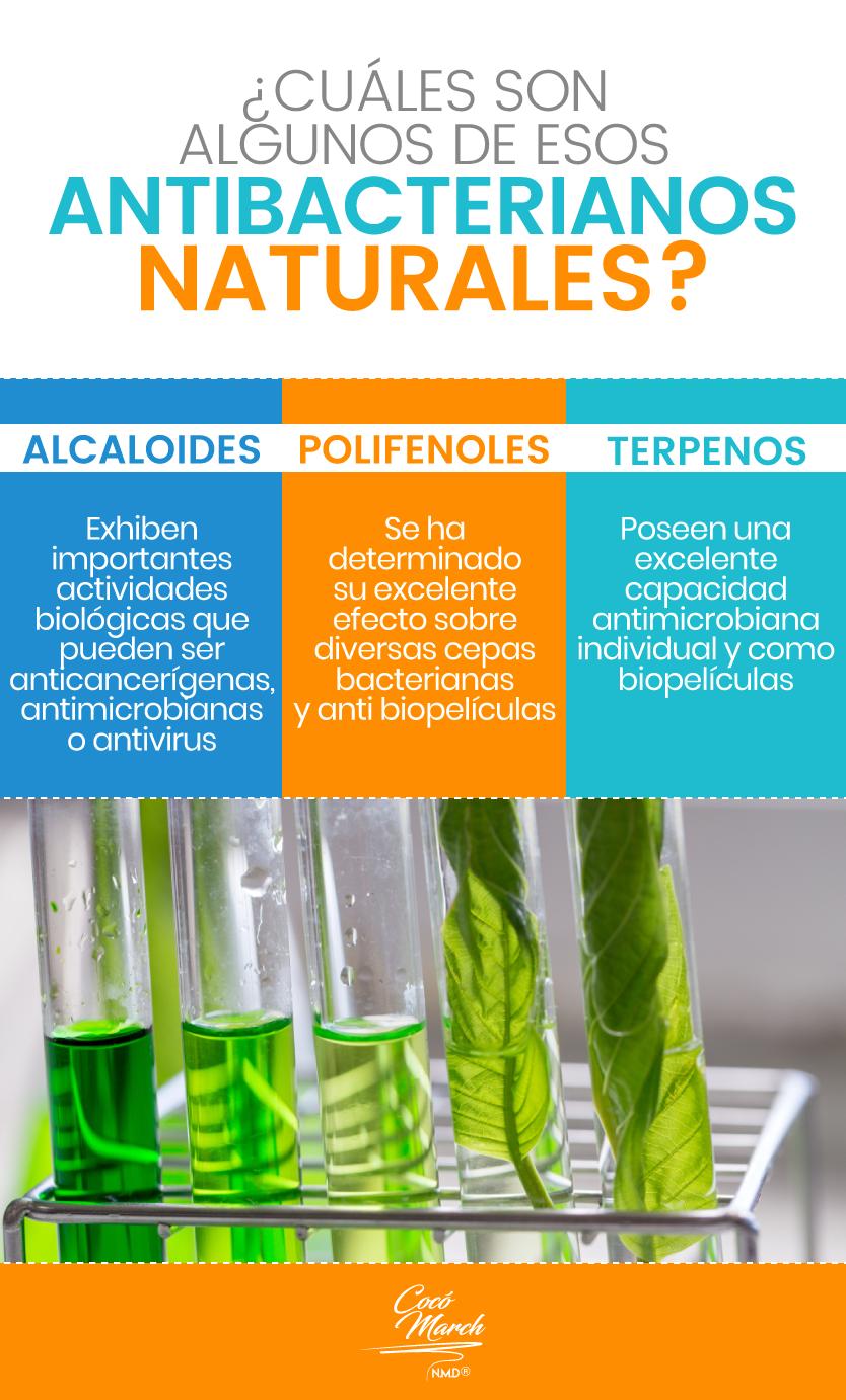 antibacterianos-naturales