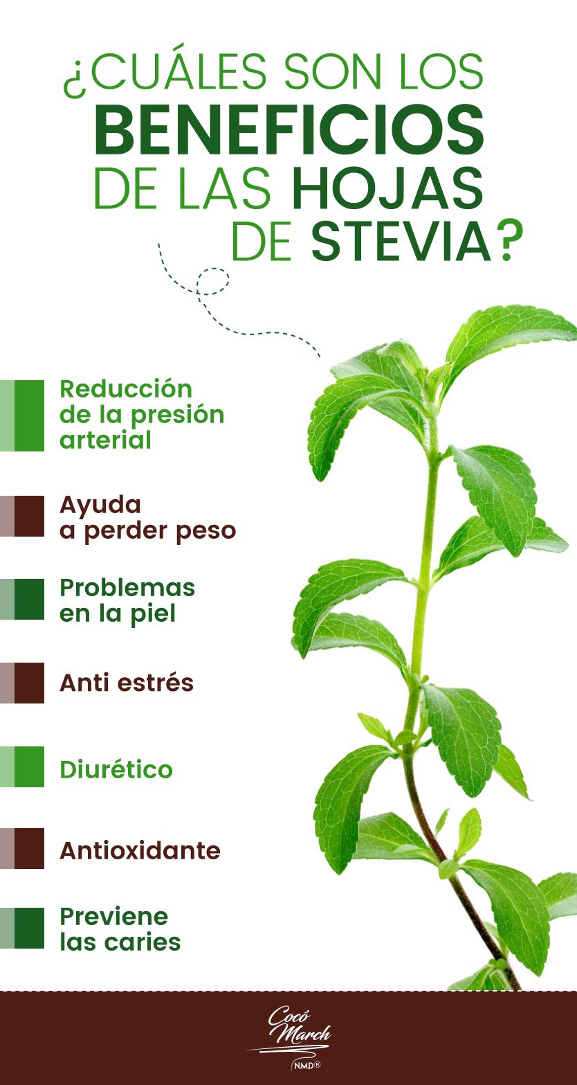 hojas-de-stevia-beneficios