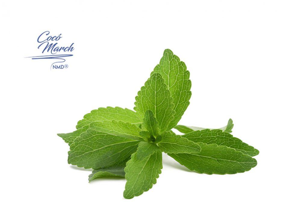 beneficios-de-las-hojas-de-stevia