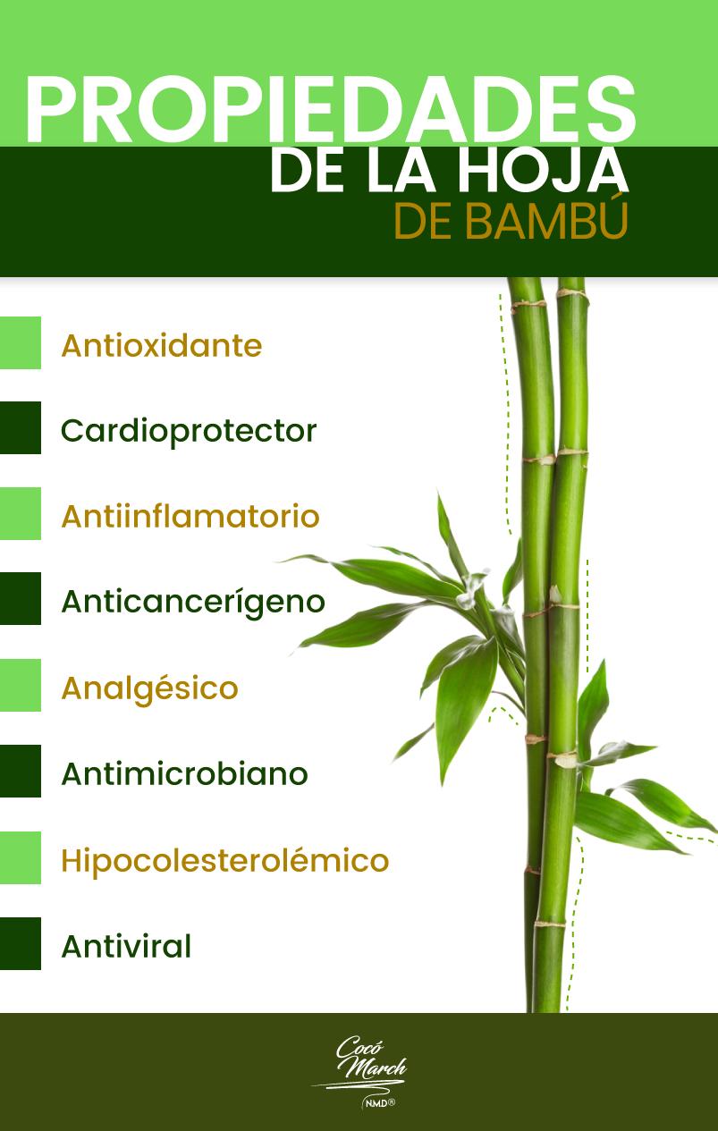 infusion-de-hoja-de-bambu-propiedades