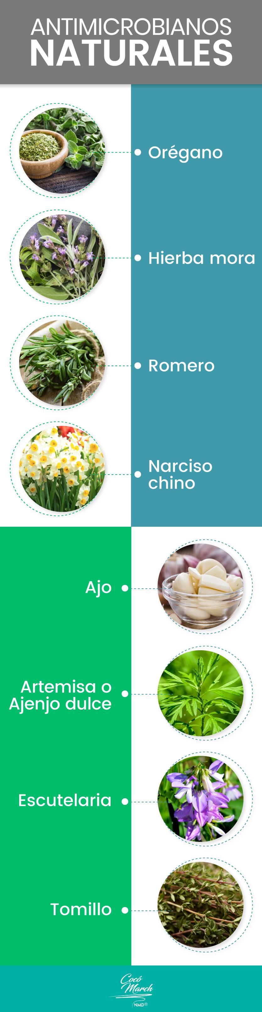 antimicrobianos naturales