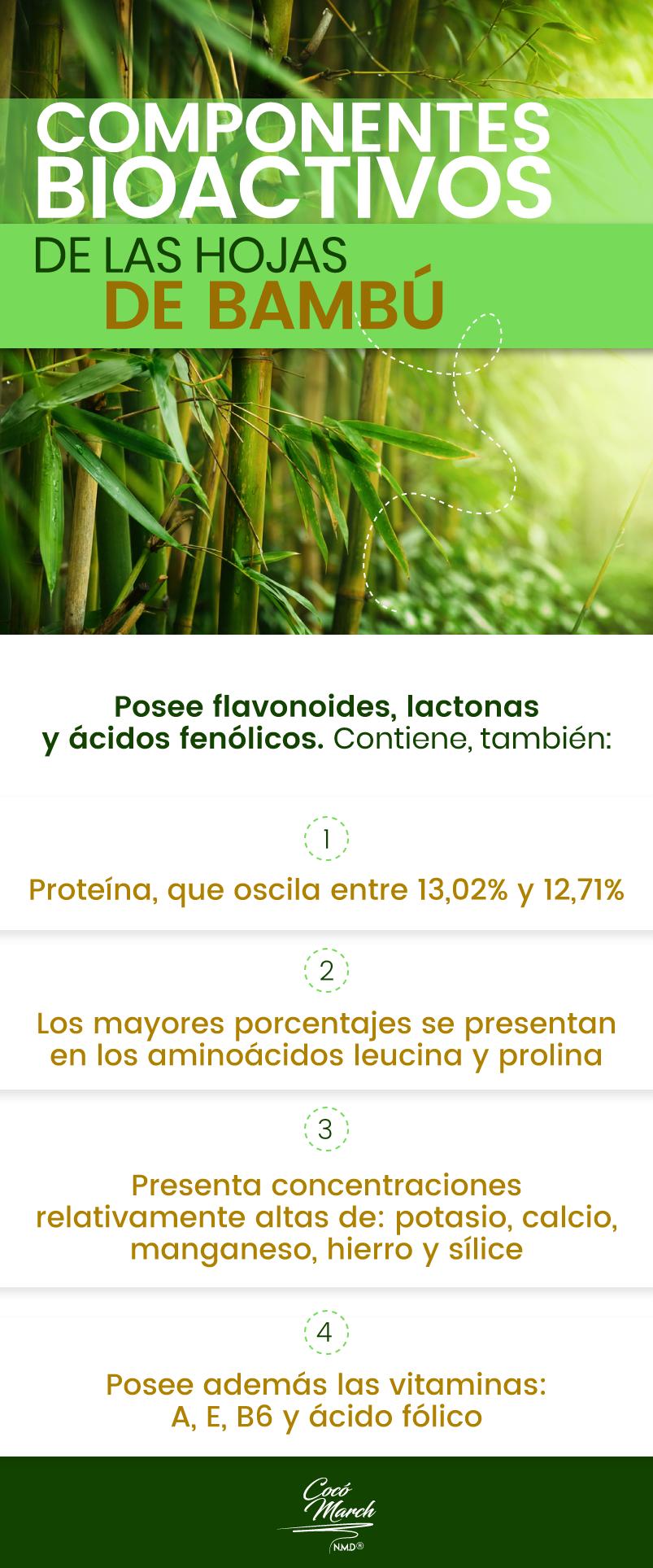 infusion-de-hoja-de-bambu-componentes-bioactivos