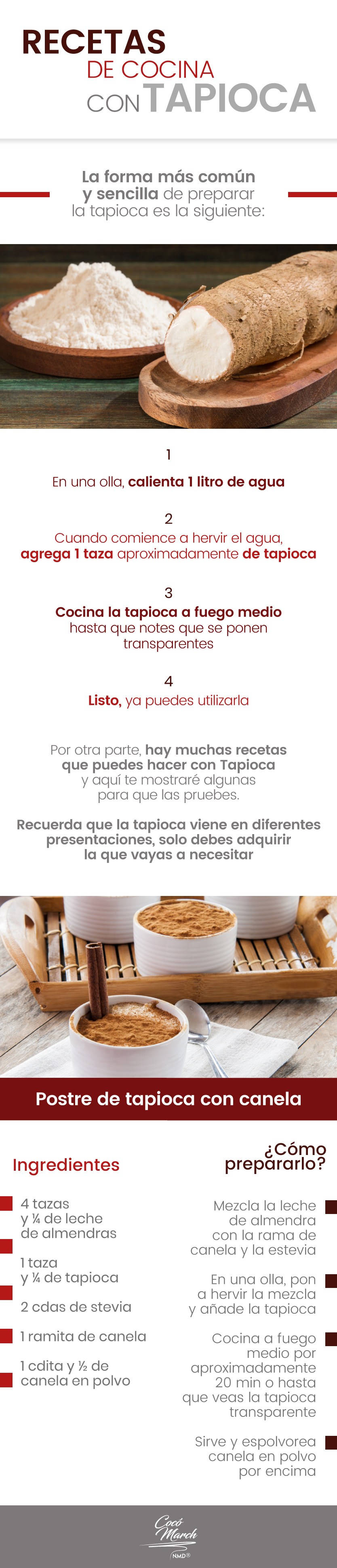 tapioca-recetas