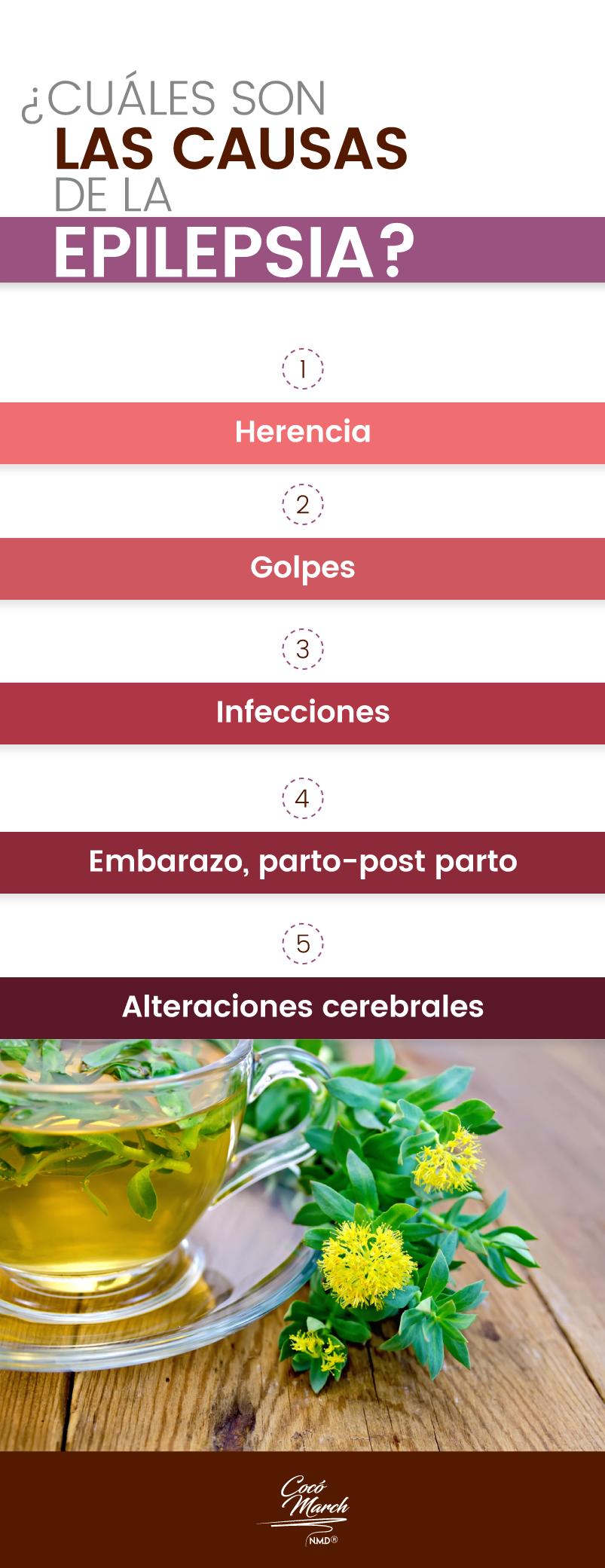 causas-de-la-epilepsia
