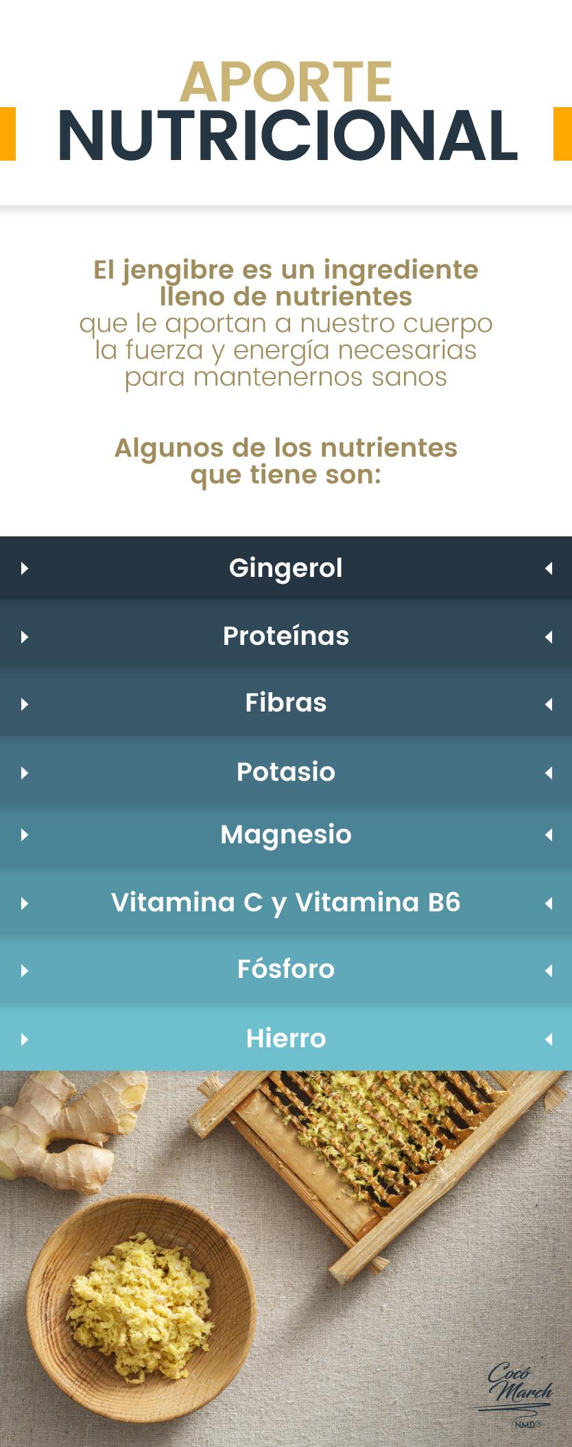 aporte-nutricional-del-jengibre