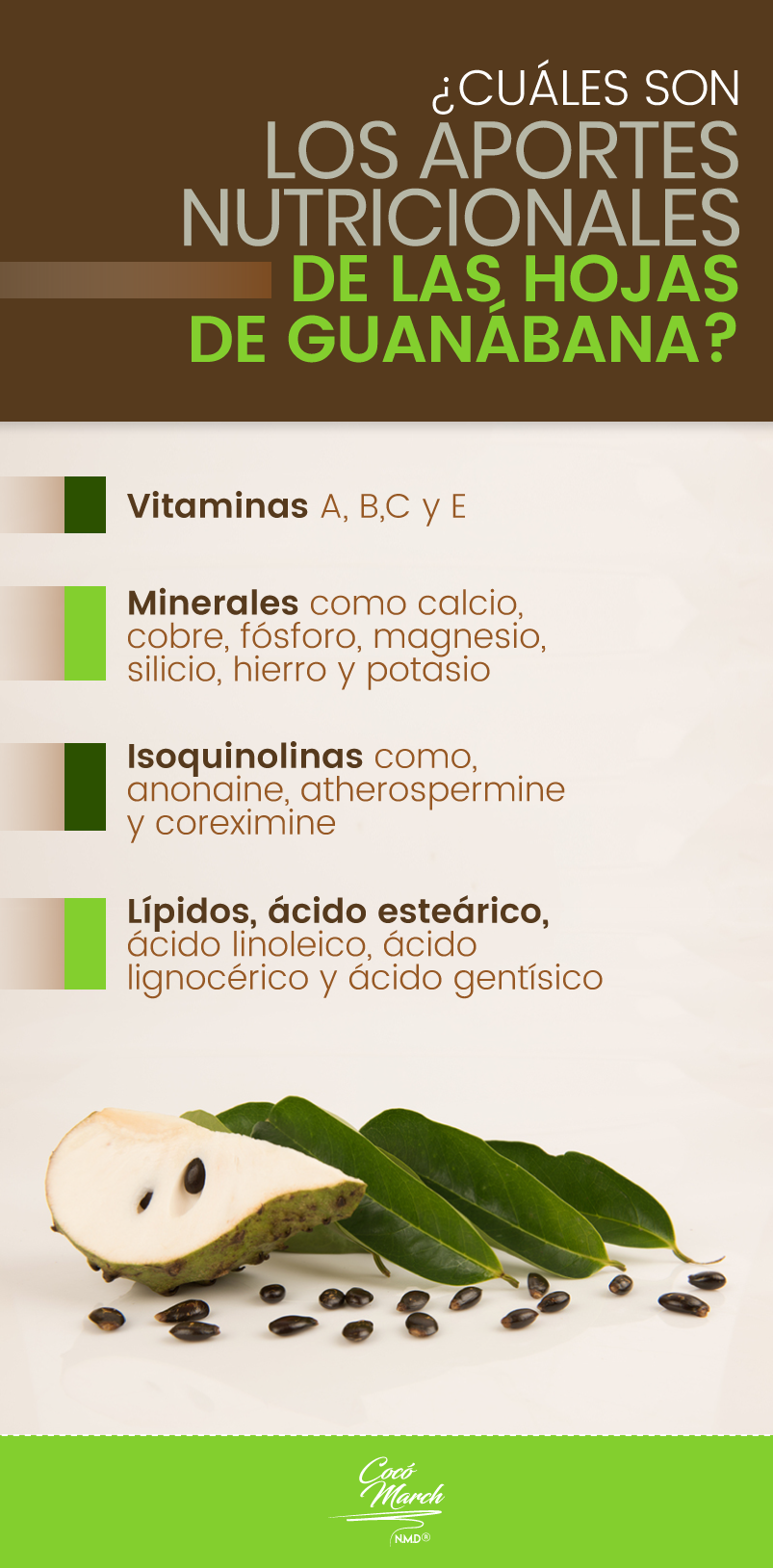 aportes-de-las-hojas-de-guanabana