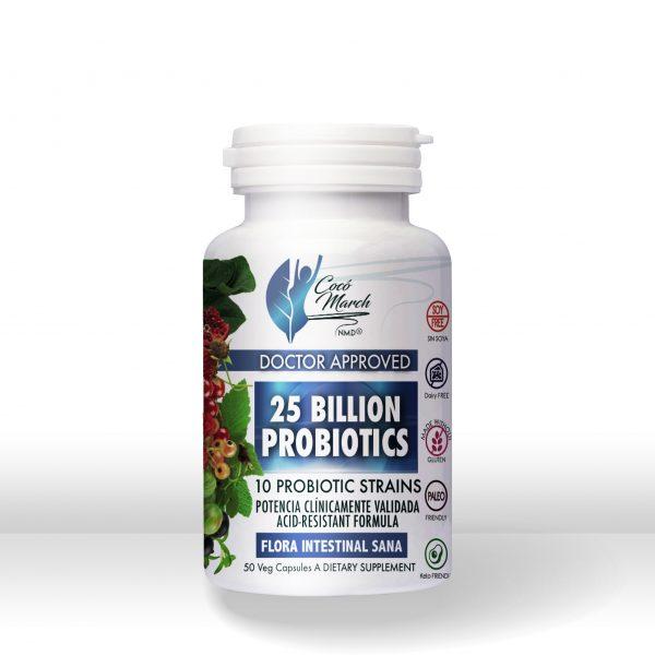 probiotics-probioticos