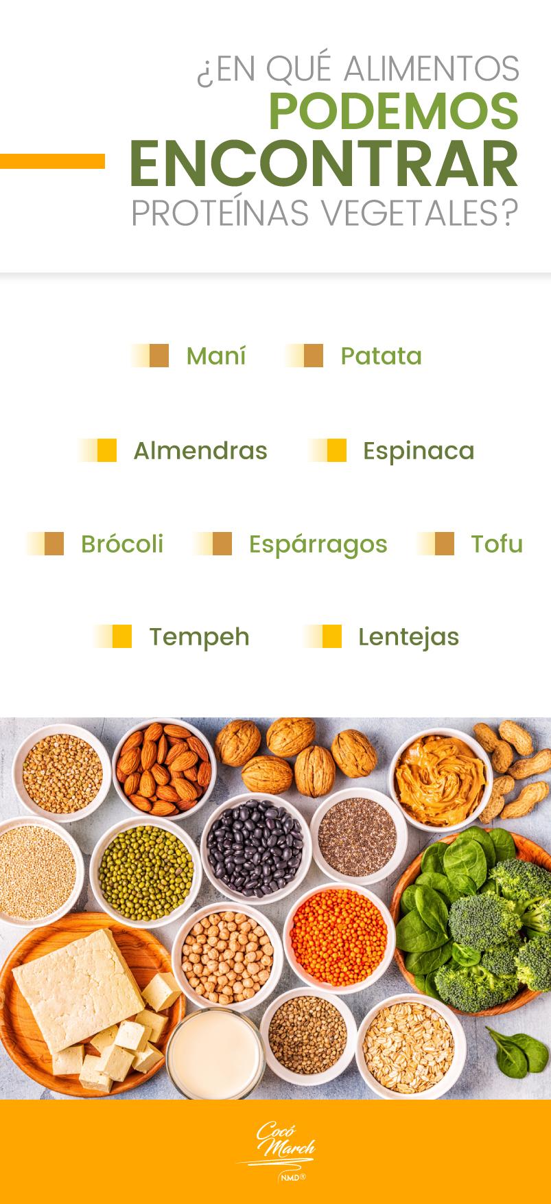 en-cuales-alimentos-encontramos-las-proteinas