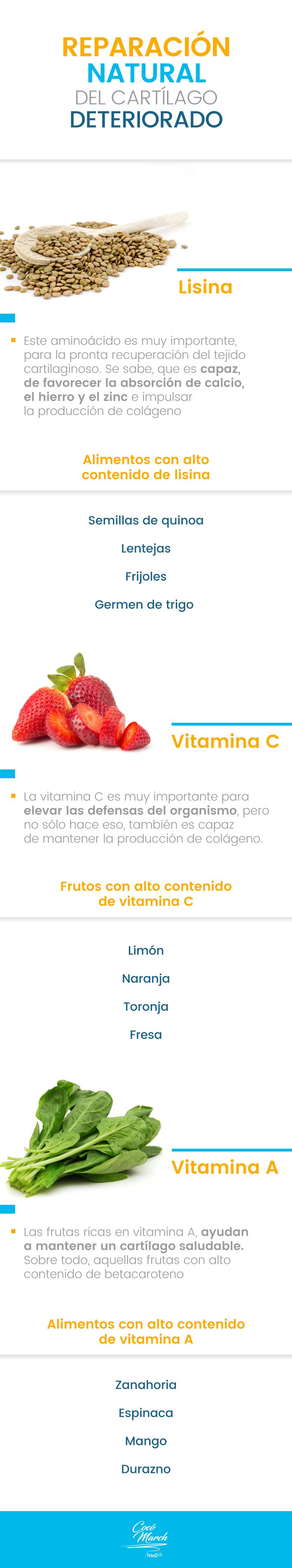 alimentos-para-regenerar-cartilagos