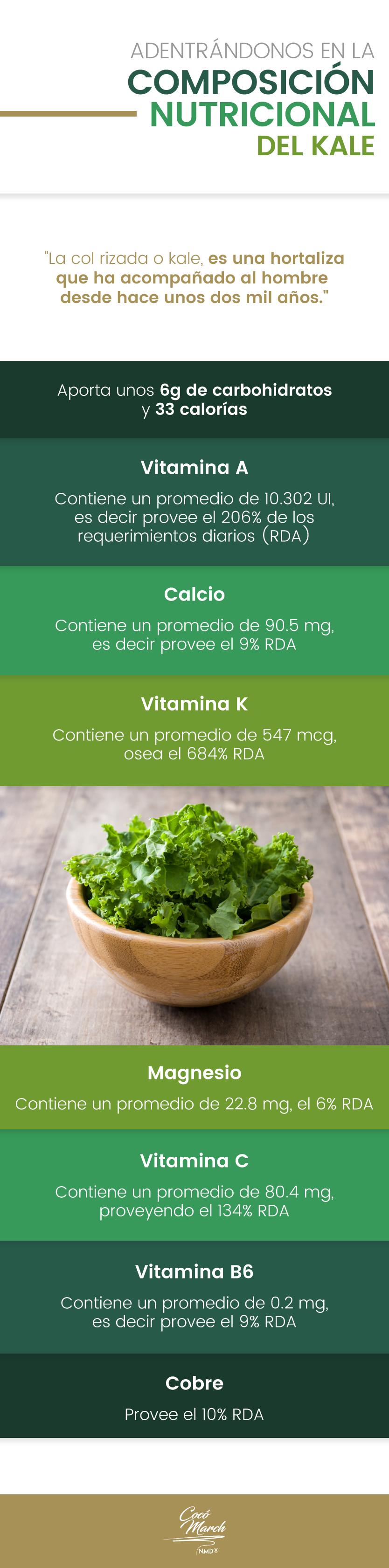 composicion-nutricional-del-kale