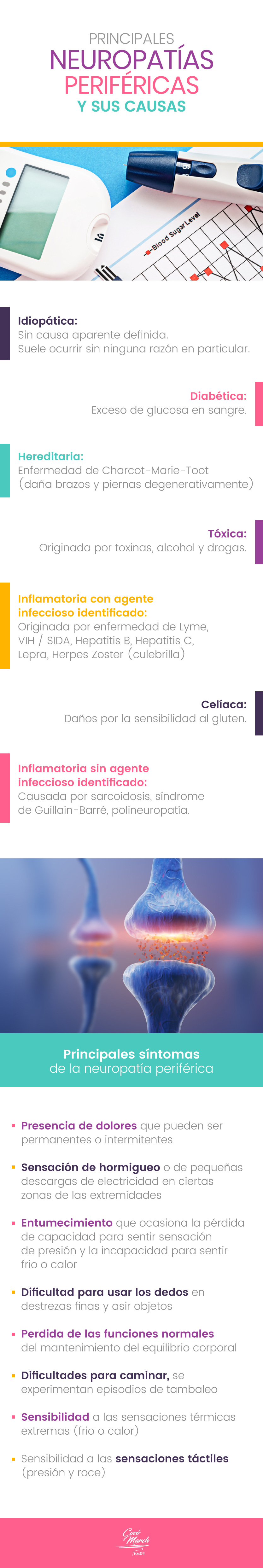 principales-neuropatias-perifericas