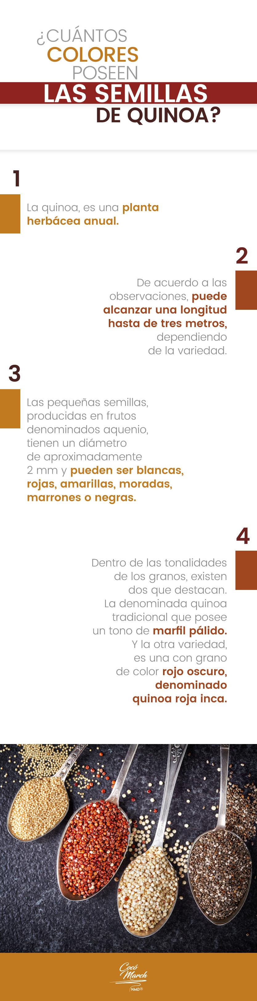 semillas-de-la-quinoa