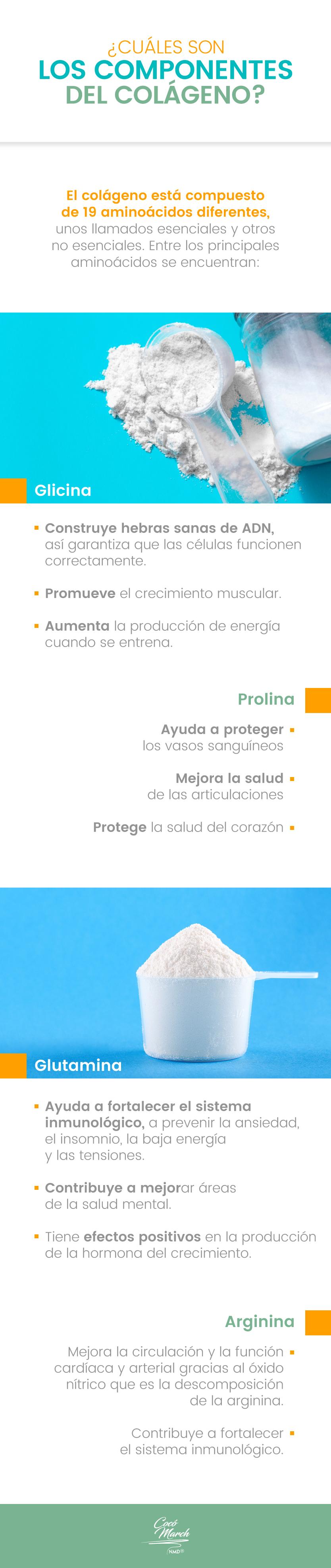 componentes-del-colageno