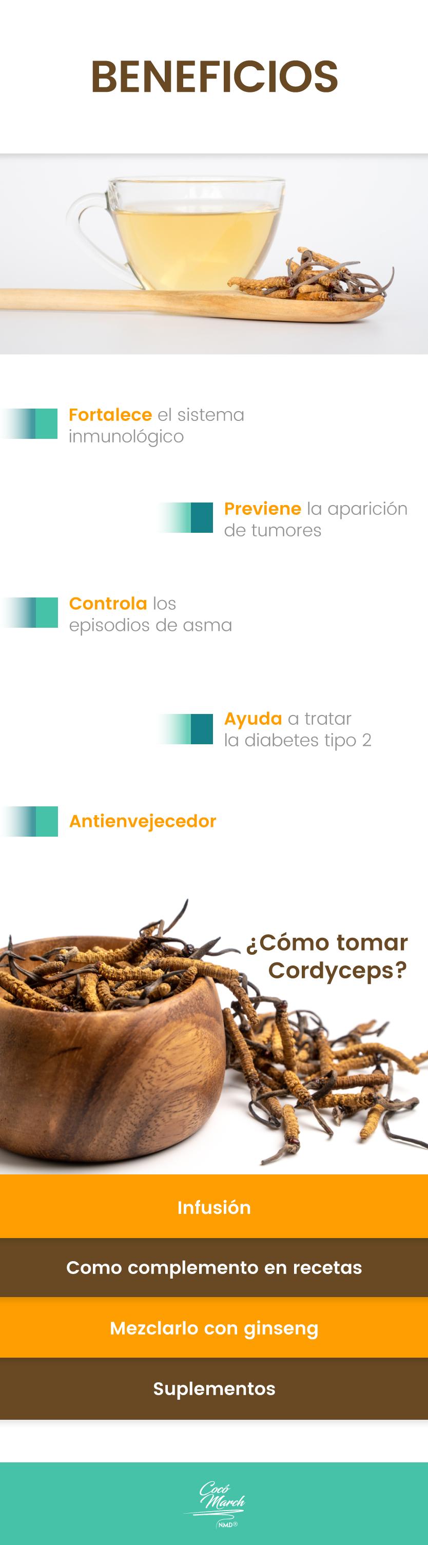 beneficios-del-cordyceps-sinensis