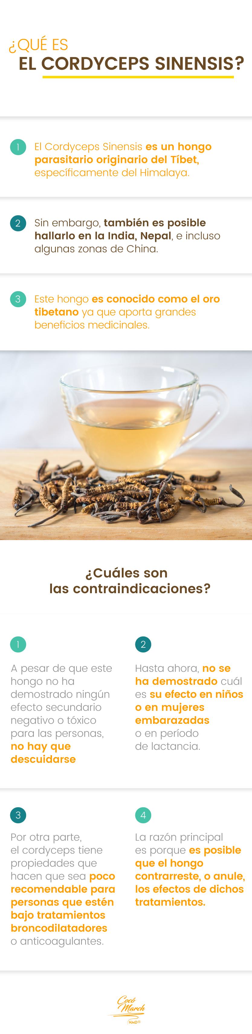 Cordyceps-sinensis-que-es