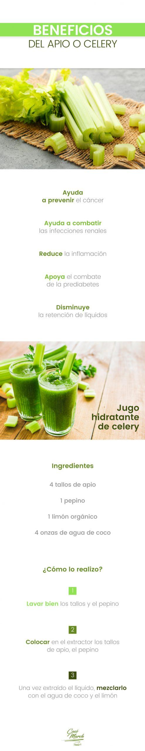 apio-o-celery-beneficios
